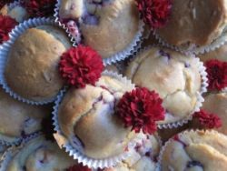 Chi-Cafe-Weihnachtsmuffins – Dr. Jacob's Rezepte